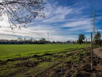 Andere toekomst voor voetbalterrein FC Lambrecht: bosuitbreiding van bijna 9.000 vierkante meter