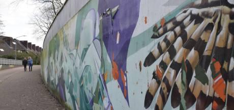 Graffitikunstwerk nu al in verval, restaureren vindt Goirle te duur
