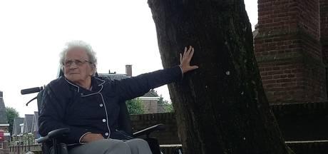 Vrijheidsboom moet wijken voor Meestershuis