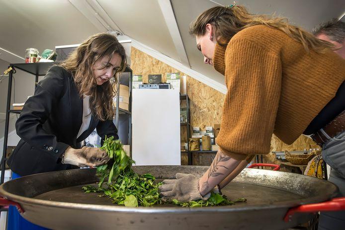 Gedeputeerde Anne-M arie spierings (l) met theesommelier Dionne Oomen aan de theebereiding bij haar bezoek aan Tea by Me' waar ze een agrofoodpluim heeft uitgereikt.