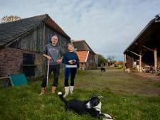 Echtpaar ziet droom van 'talentboerderij' uitkomen in Laren: 'Daar moet een kabelbaan komen!'
