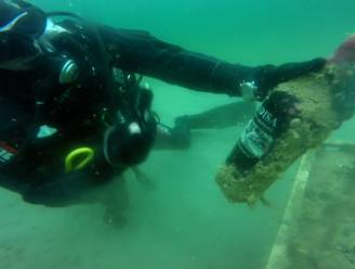 """Duikers halen wijn uit zee en sommeliers vinden resultaten """"verbluffend"""""""