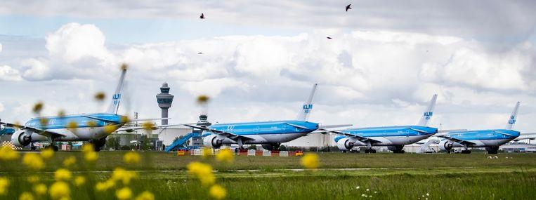 Toestellen van de KLM staan geparkeerd bij luchthaven Schiphol. KLM voert vanwege de coronacrisis veel minder vluchten uit. Beeld ANP