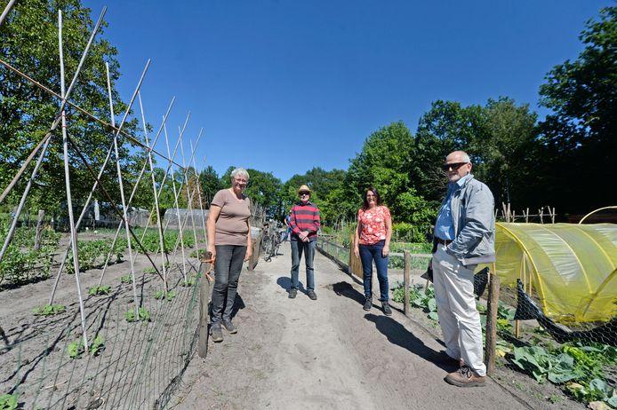 Hannie  ten Have, Gert van den Berg, Teresa Dijkgraaf en Jan Pietersen (vlnr) hebben hun volkstuinen op de plek waar mogelijk tiny houses komen te staan.