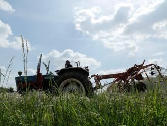 Greenpeace stelt Vlaamse regering in gebreke voor slechte waterkwaliteit in landbouwgebied