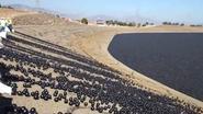 Zee van 96 miljoen plastic ballen moet Los Angeles van de droogte redden