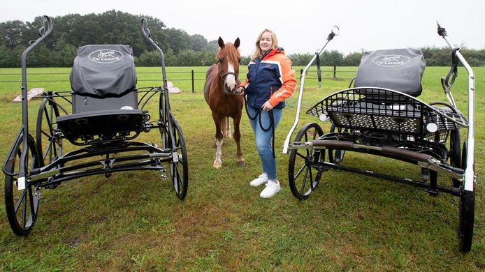 Marloes van 't Veld debuteert met haar pony Brandon op het wereldkampioenschap mennen in Frankrijk.