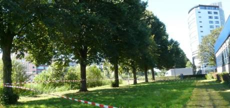 ROVA verwijdert groot wespennest in Schothorst