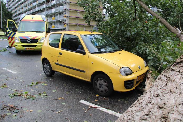 De zwangere Ilona kon de omvallende boom in Schiedam net op tijd ontwijken door op tijd op de rem te trappen. De boom klapte op de bumper van de auto.