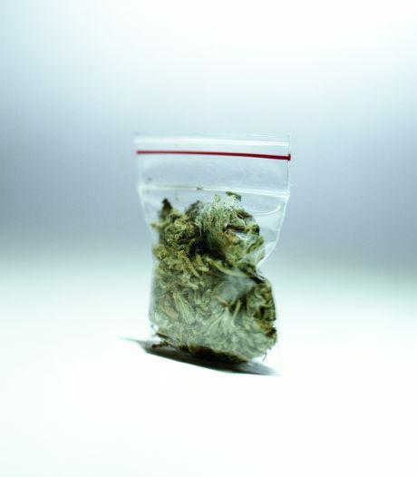 Drugspanden Lamswaarde en Heikant drie maanden op slot