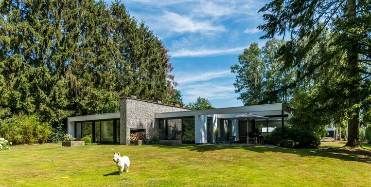 Het Amerikaanse modernisme was de inspiratiebron voor deze bungalow. De grote tuin paalt aan een park. Beeld null