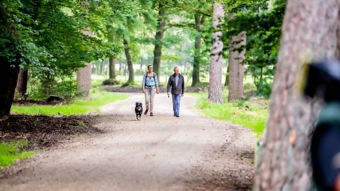 Het wordt lekker weer: ontdek de pareltjes van het Utrechts Landschap met één van deze excursies