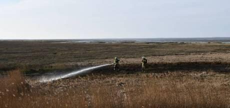 Brandje in riet naast Oesterdam (N659)