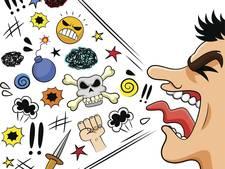 Naschreeuwen en uitschelden verboden in Berkelland