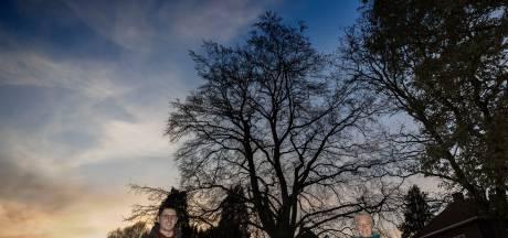 Bomenliefhebbers op de bres voor oudste beuk van Borkel
