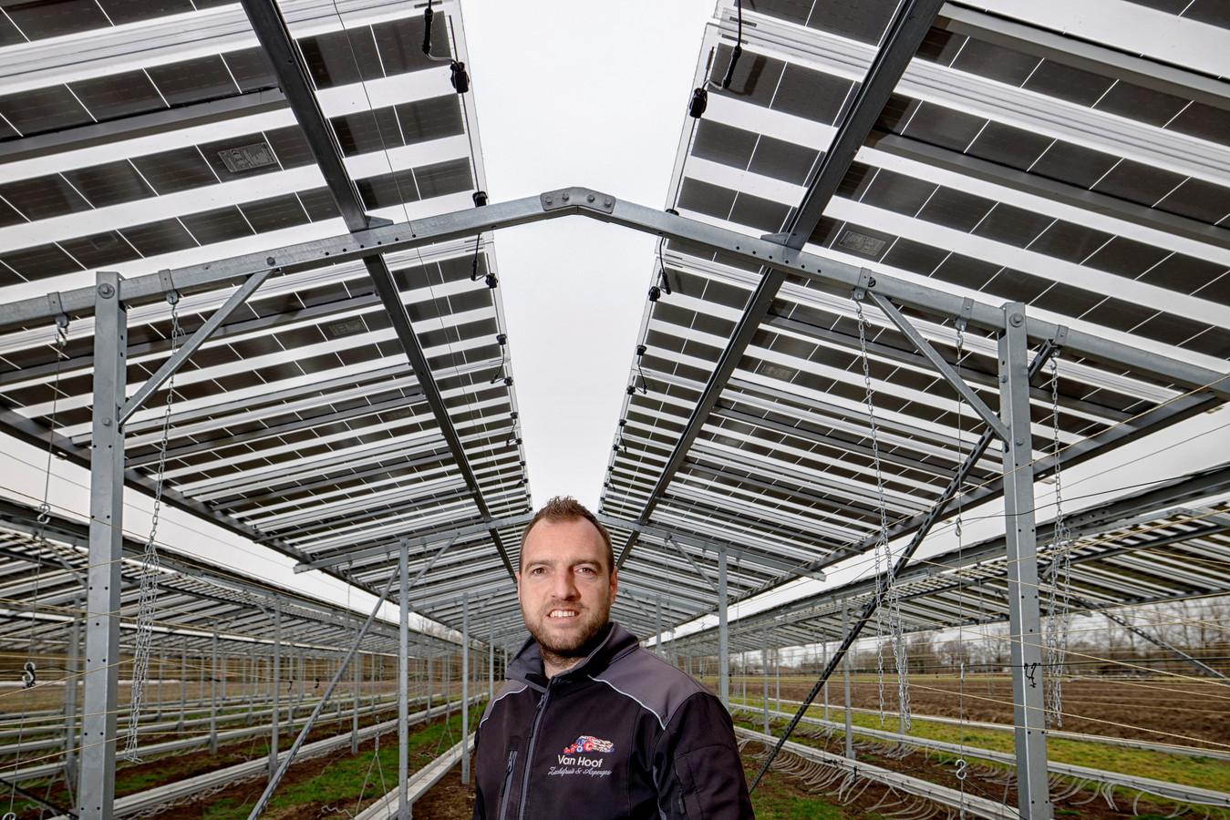 Fruitteler Maarten van Hoof bij zijn proefinstallatie met zonnepanelen.