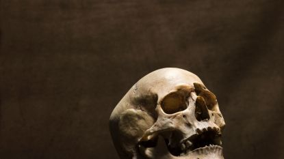 800 skeletten gevonden onder Gentse Sint-Baafskathedraal