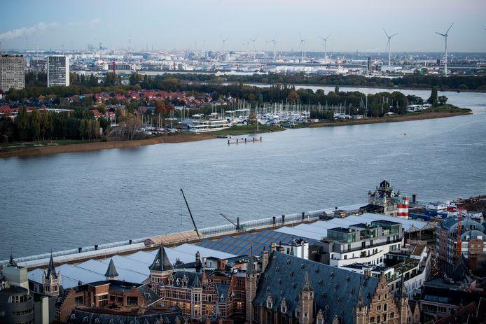 De Schelde is minder vervuild dan vroeger, maar je eet beter nog geen vis die uit de Schelde komt.