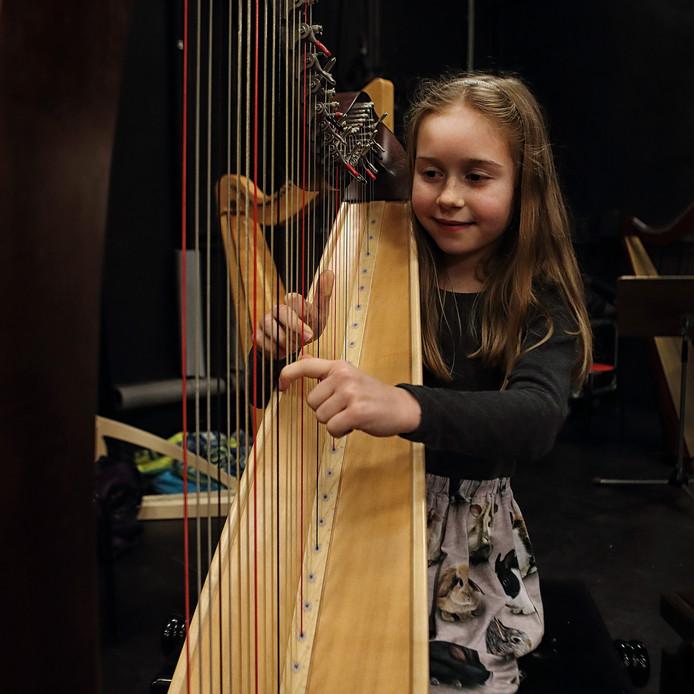 Julie Vonk uit Bergen op Zoom op harp. Foto Chris van Klinken