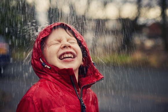 Gefilterd regenwater is geschikt voor alle toepassingen waarvoor geen drinkbaar water nodig is.