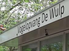 Inbreker steelt donaties en peperdure microscoop van vogelopvang De Wulp: 'Dan ben je heel laag gezonken'