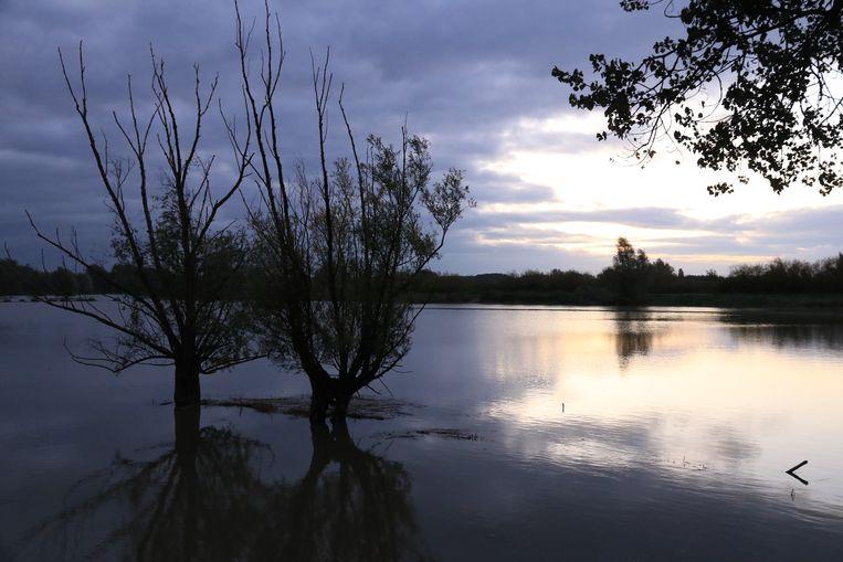 Springtij zet overstromingsgebied in Waasmunster blank.