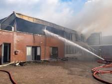 Speurhonden vinden nog een slachtoffer: drie doden in uitgebrand appartement Werkendam