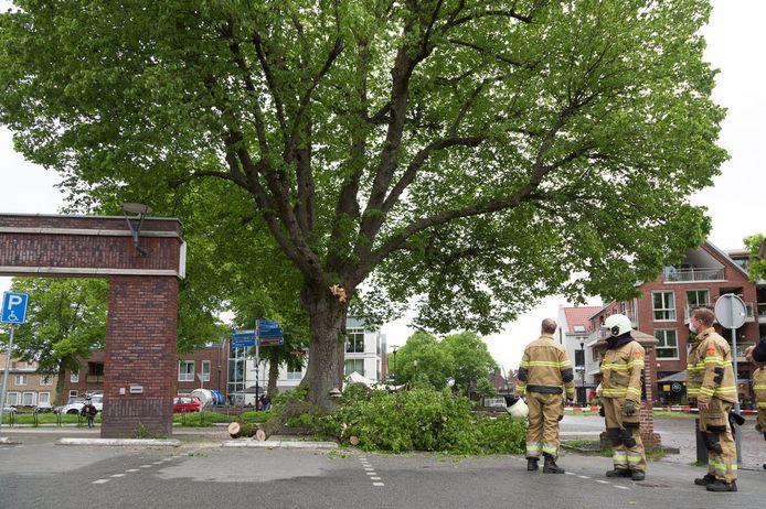 Tak breekt af van een monumentale boom in Overloon.