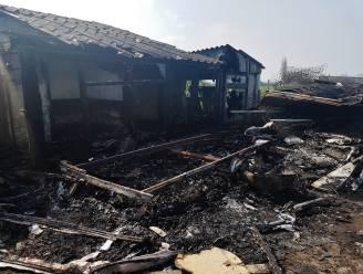 Brand in caravan bij schapenstal aangestoken, mogelijks door hangjongeren