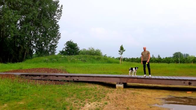 """""""Unieke hondenspeelwei met waterpartij mogelijk"""": raadslid stelt plek voor aan nieuwe wijk Het Broek"""
