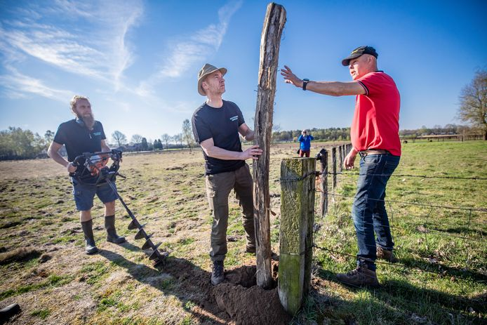 Mensen van Wolf Fencing plaatsen een wolvenhek in de buurt van Nunspeet. Een hek van 1.20 meter stroom is volgens experts een doeltreffende maatregel om de roofdieren uit weides met schapen en geiten te houden.