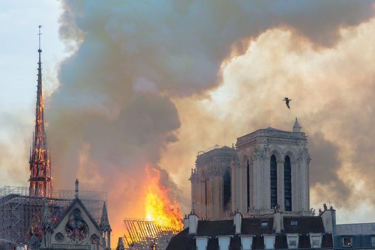 Een enorme vuurzee verwoestte de Notre-Dame. Beeld Photo News