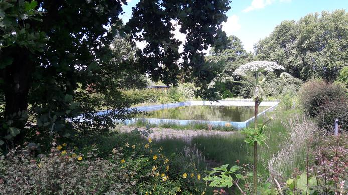 Zwembad De Duikelaar.Hardinxvelds Buitenbad Mogelijk In De Zomer Van 2021 Weer