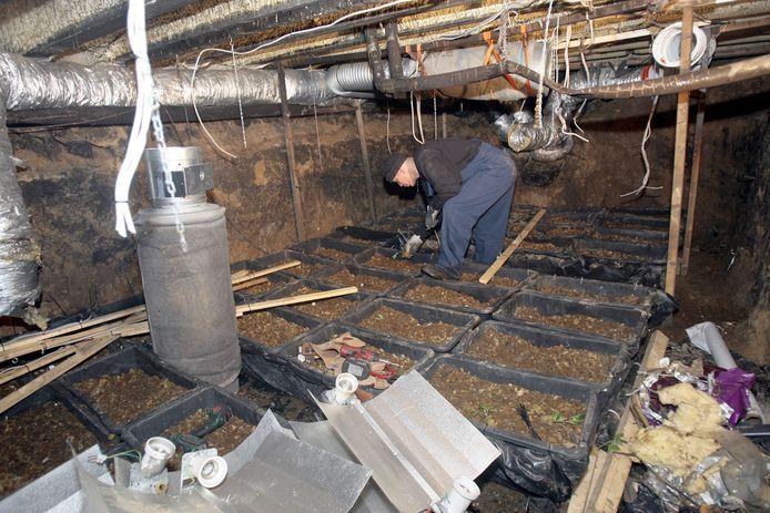 Een wietkwekerij in een uitgegraven kruipruimte die de politie aantrof in het Eindhovense Woensel.
