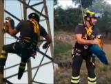 Brandweer redt papegaai uit elektriciteitspaal