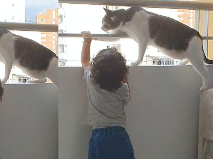 Kat voorkomt dat peuter van balkon valt