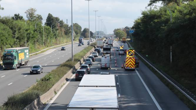 Chauffeur gewond na ongeval op E40 richting Brussel in Erpe-Mere