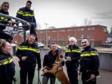 Gratis halsbanden om meldingsbereidheid onder hondenbezitters te vergroten