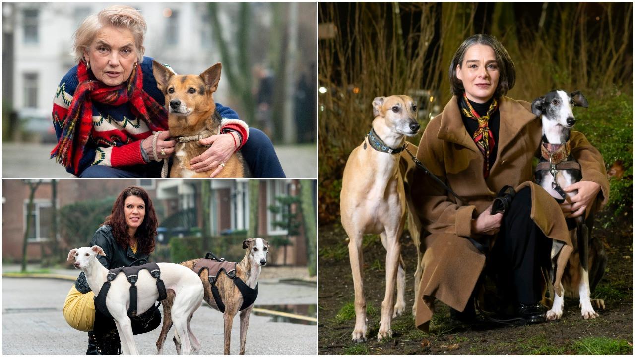Van linksboven met de klok mee: Ellen met hond Dina, Monique Karman met honden Dali en Núnez en Renate met honden Yulie en Noa.