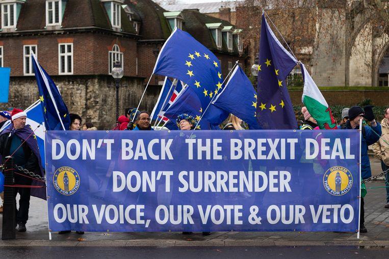 Anti-brexit-demonstranten in Londen, 100 dagen voor de brexit officieel in zou gaan. Beeld Photo News