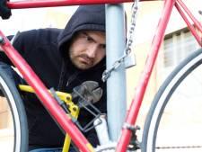 Alerte Tielenaar ziet fietsendief er met zijn tweewieler vandoor gaan en levert hem over aan de politie
