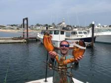 Amerikaanse kreeftenvisser: 'Ik ben uitgespuugd door walvis'