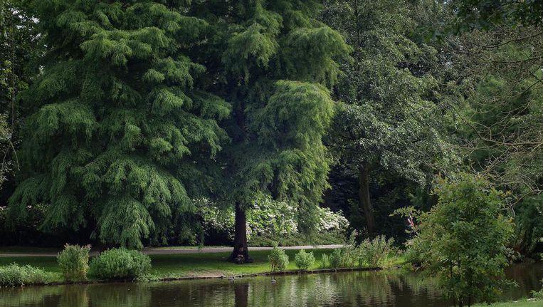 De oppervlakte van het Oosterpark verdubbelt Beeld Mats van Soolingen