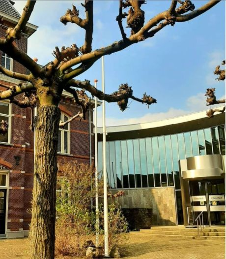 Oirschotse gemeenteraad schrikt van brief 'verontruste inwoners': 'We moeten in gesprek'