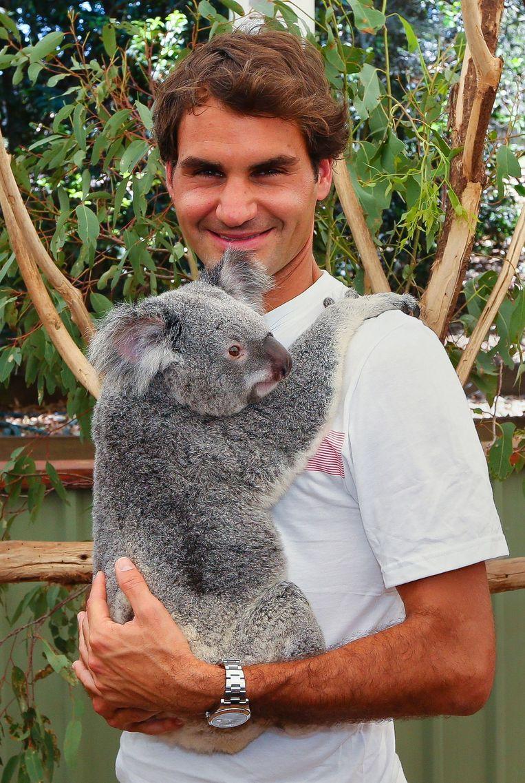 De Zwitserse tennisspeler Roger Federer in Brisbane op 29 december 2013. Beeld AFP