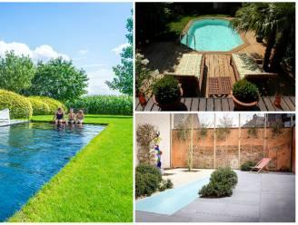Nu al massale bestellingen voor zwembad in de tuin: welke verschillende types zijn er op de markt en wat kosten ze?