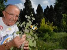 De Borculose veldprediker: frater Willibrordus is overleden
