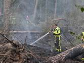 Bosbrand in Moergestel, politie vermoedt brandstichting