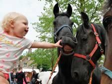 Streep door Paardenmarkt Heenvliet: 'Met volle kracht kijken we naar volgend jaar'