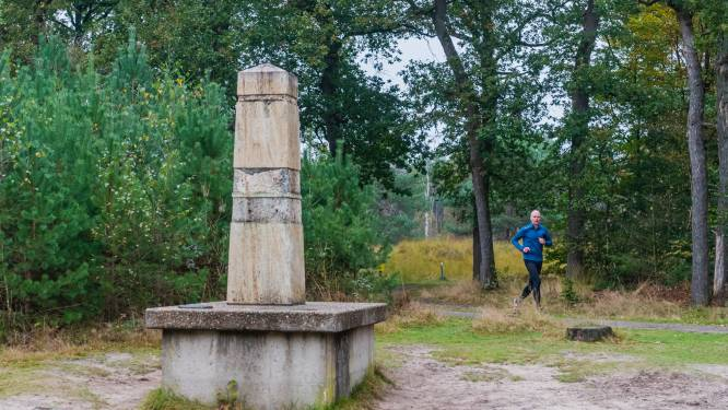 Beeldhouwer Theo van de Vathorst (87) kan wel huilen: dieven vernielen zijn kunstwerk in Zeister bossen
